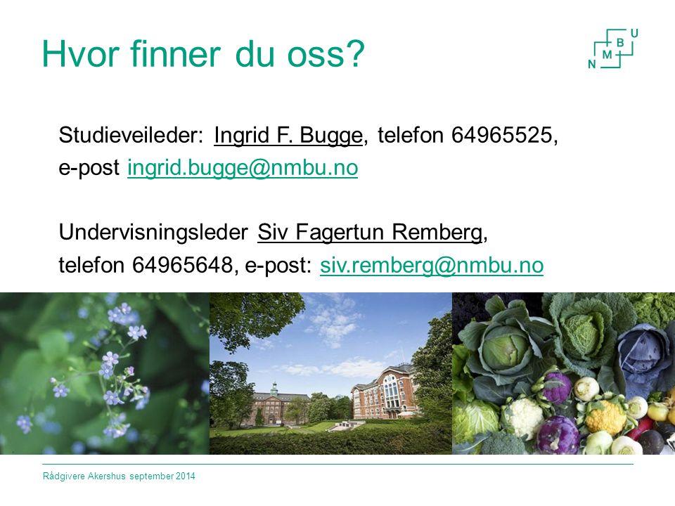 Hvor finner du oss Studieveileder: Ingrid F. Bugge, telefon 64965525,