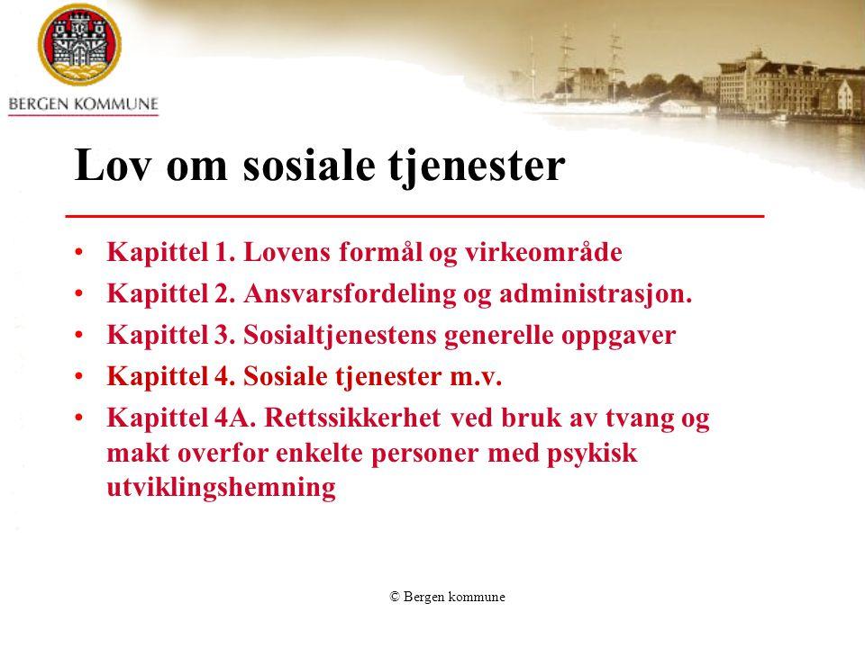Lov om sosiale tjenester