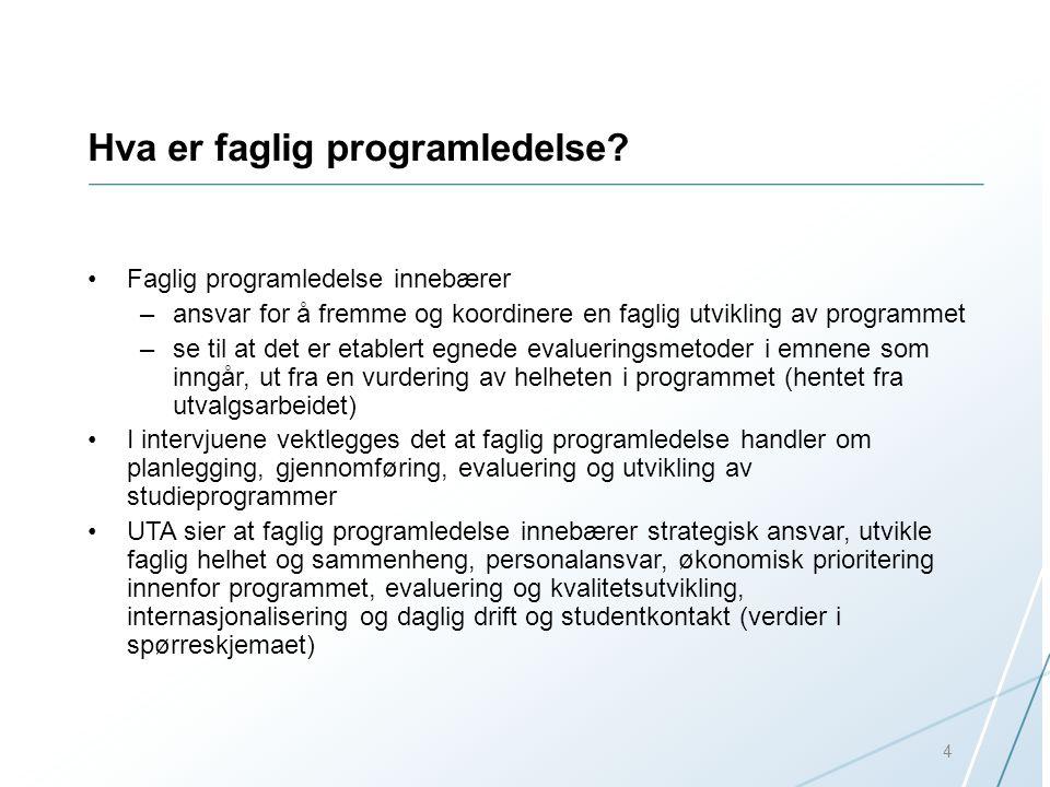 Hva er faglig programledelse