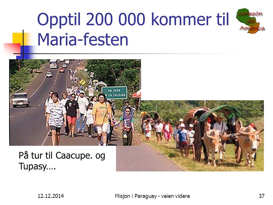 Opptil 200 000 kommer til Maria-festen