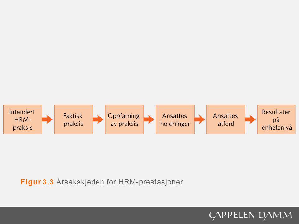Figur 3.3 Årsakskjeden for HRM-prestasjoner