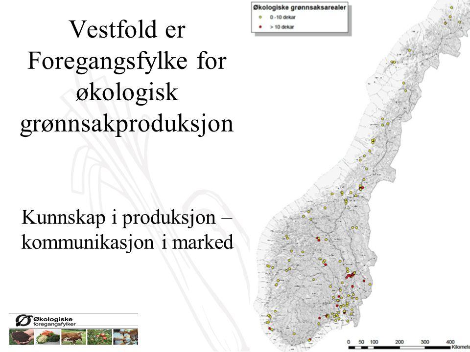 Vestfold er Foregangsfylke for økologisk grønnsakproduksjon