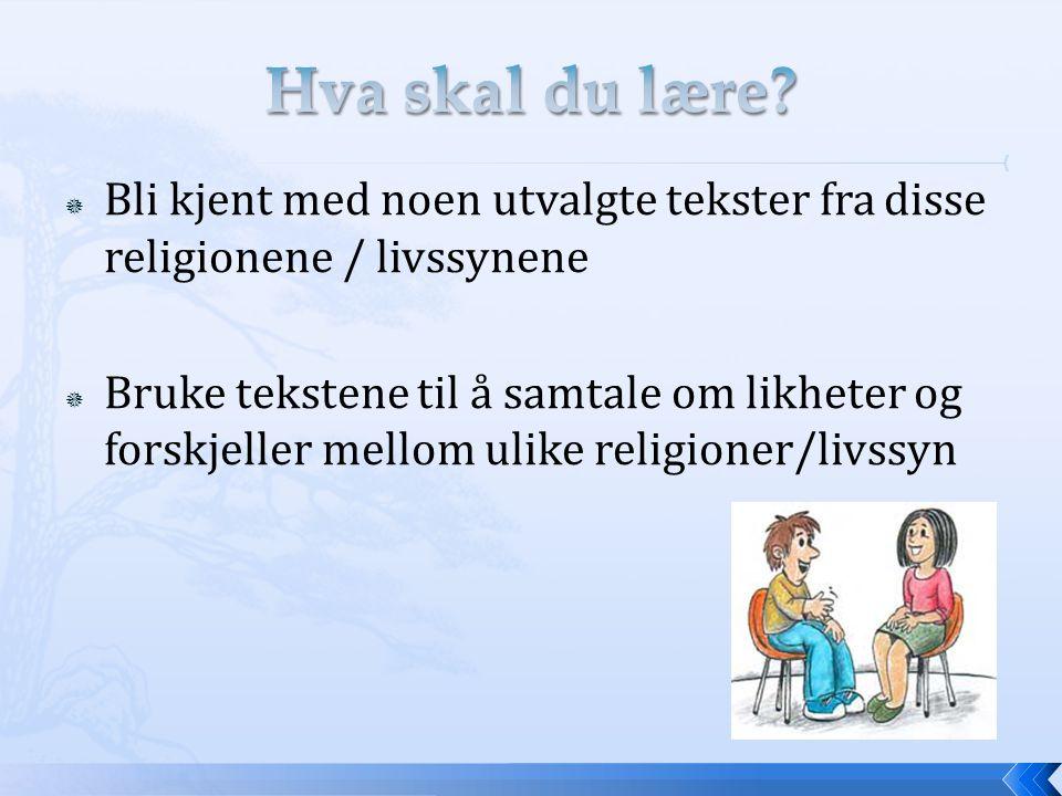 Hva skal du lære Bli kjent med noen utvalgte tekster fra disse religionene / livssynene.