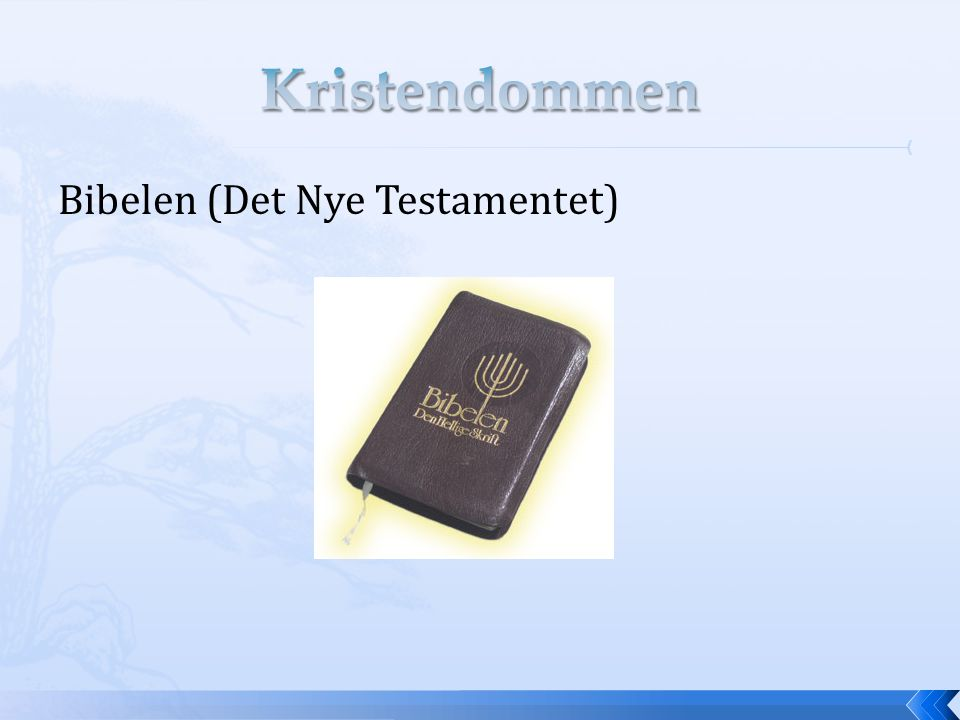Kristendommen Bibelen (Det Nye Testamentet)