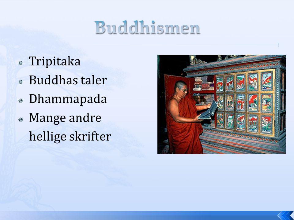 Buddhismen Tripitaka Buddhas taler Dhammapada Mange andre
