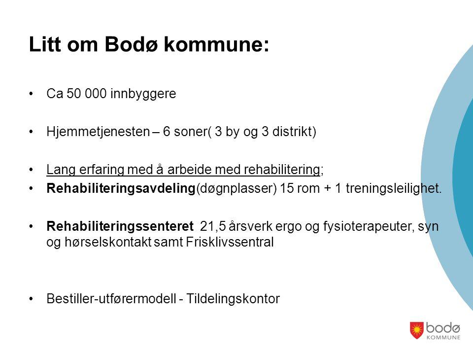 Litt om Bodø kommune: Ca 50 000 innbyggere
