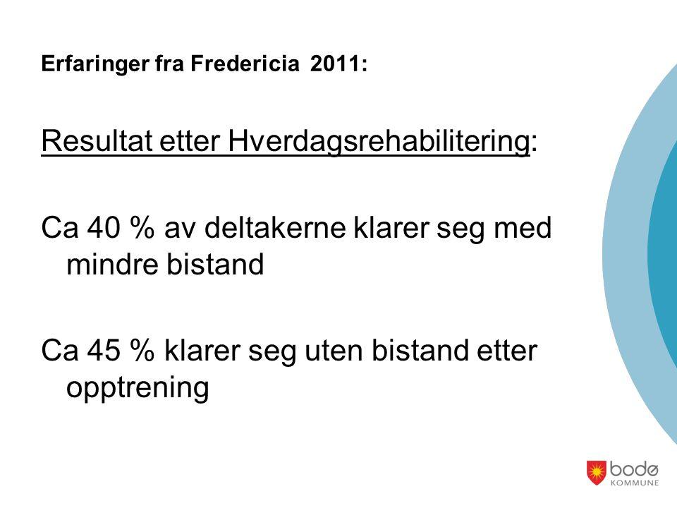 Erfaringer fra Fredericia 2011: