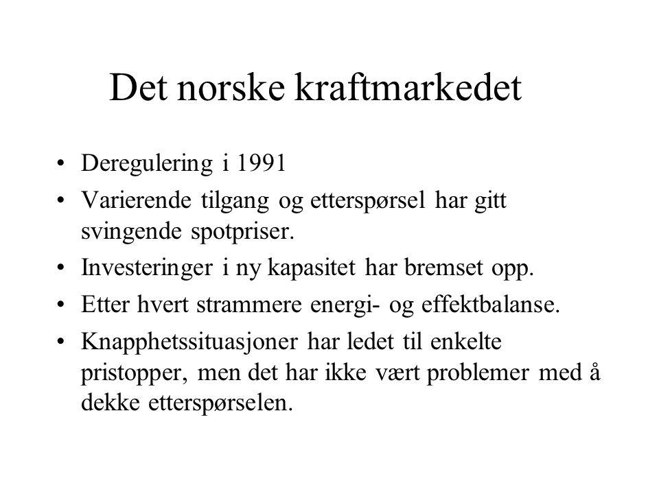 Det norske kraftmarkedet