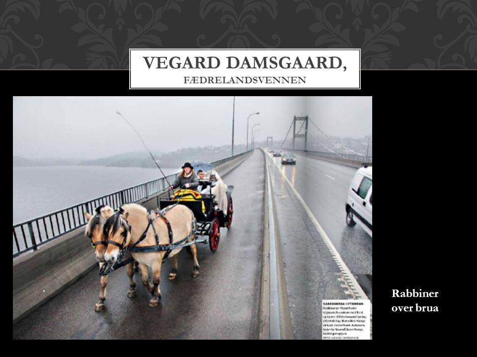 Vegard Damsgaard, Fædrelandsvennen