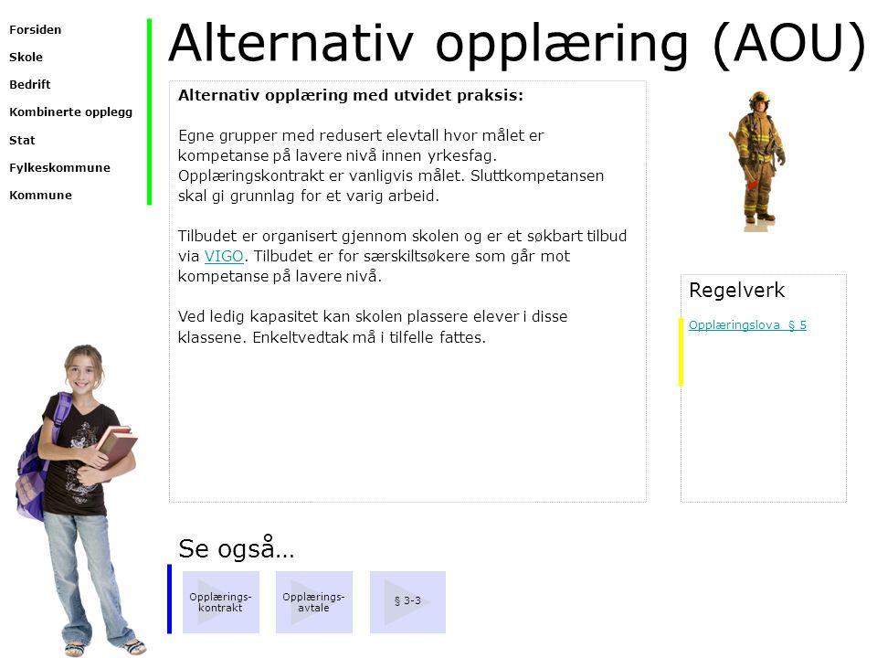 Alternativ opplæring (AOU)