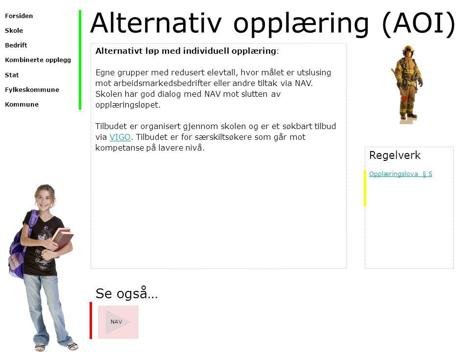 Alternativ opplæring (AOI)