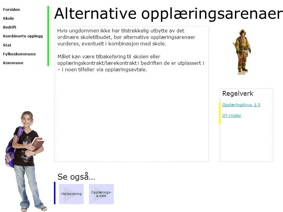 Alternative opplæringsarenaer