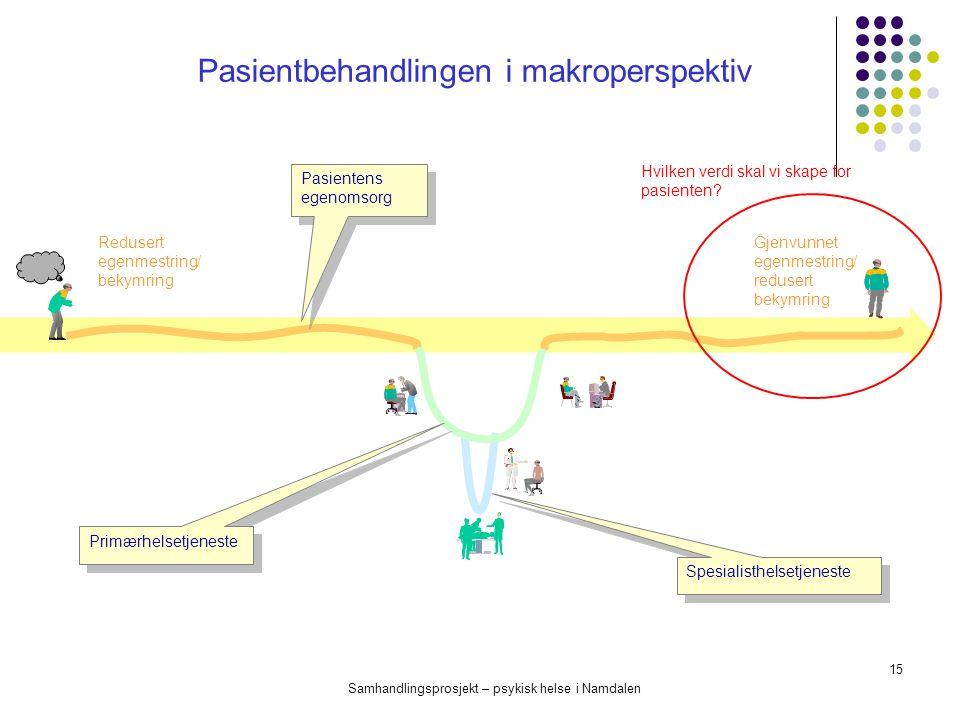 Pasientbehandlingen i makroperspektiv