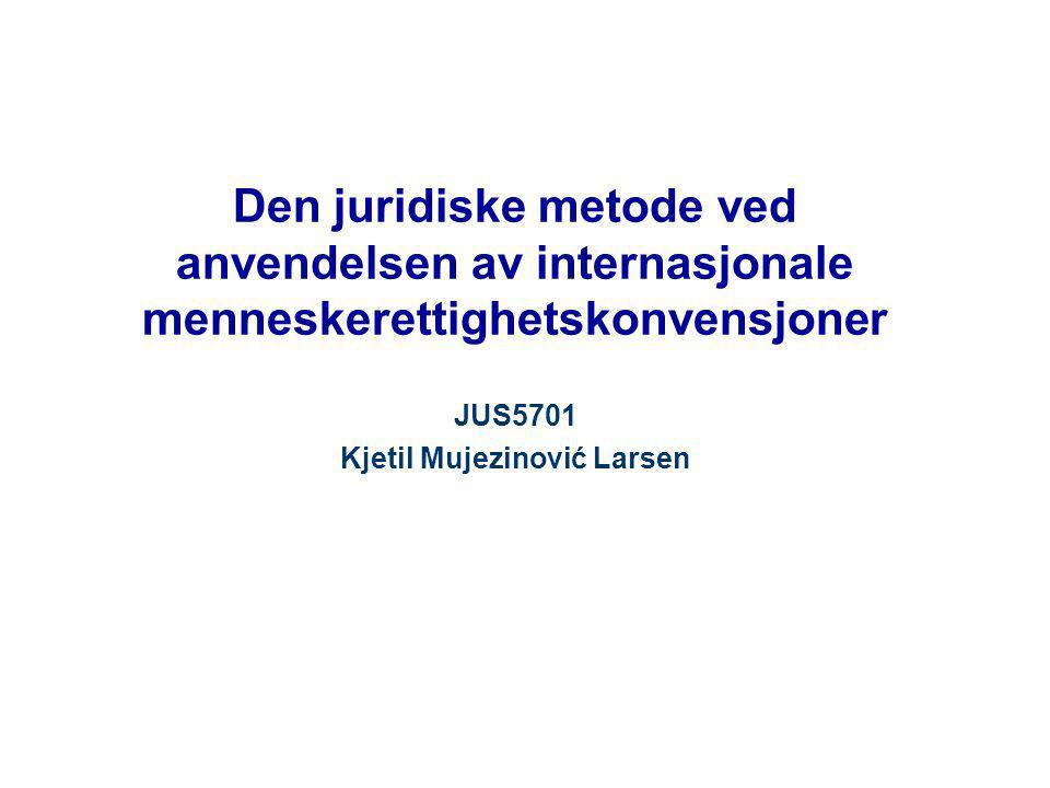 JUS5701 Kjetil Mujezinović Larsen