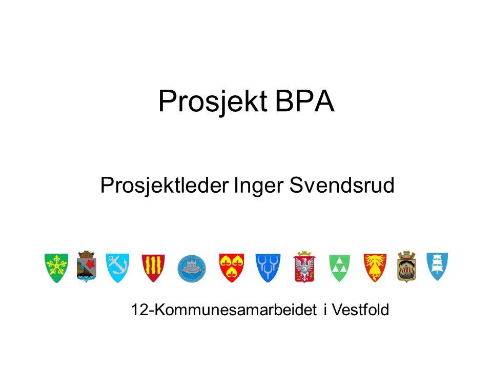Prosjektleder Inger Svendsrud