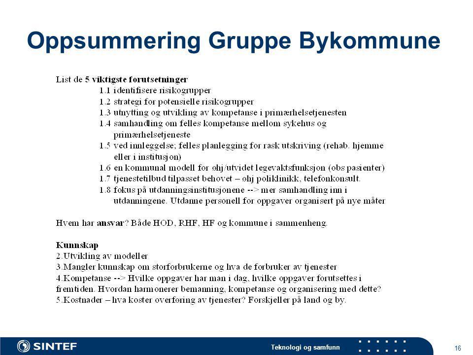 Oppsummering Gruppe Bykommune