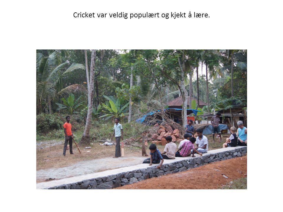 Cricket var veldig populært og kjekt å lære.