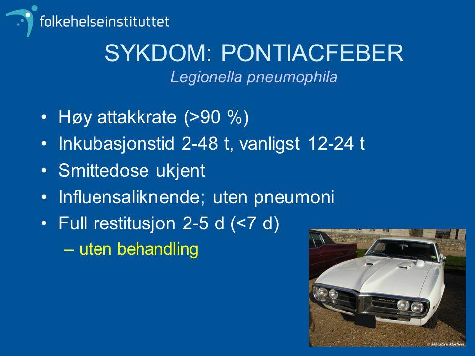 SYKDOM: PONTIACFEBER Legionella pneumophila