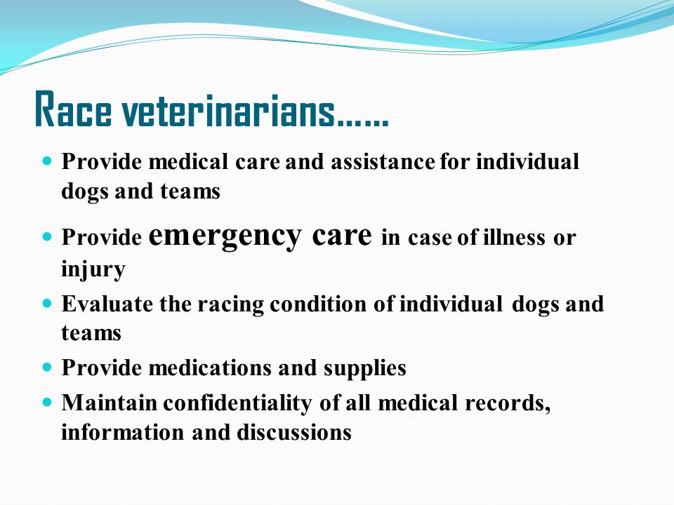 Race veterinarians…… Provide medical care and assistance for individual dogs and teams. Provide emergency care in case of illness or injury.