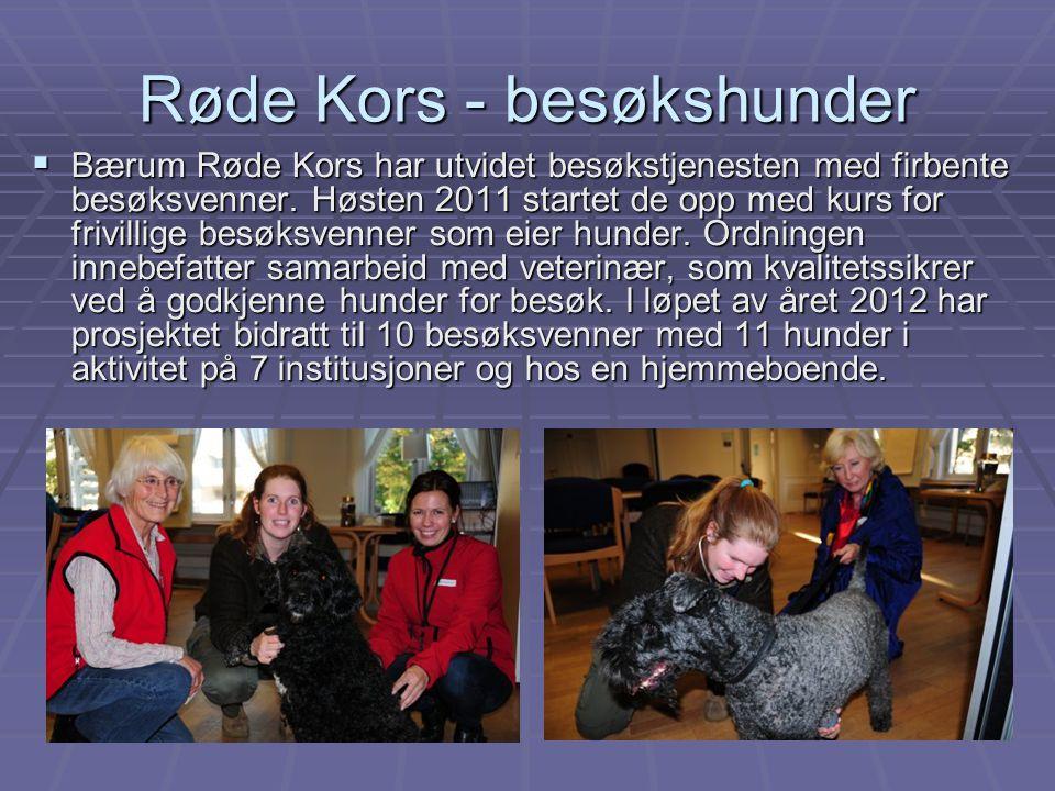 Røde Kors - besøkshunder