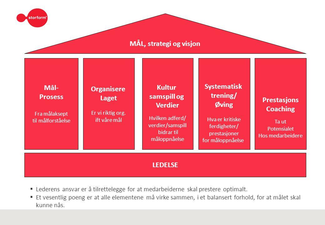 MÅL, strategi og visjon Mål- Systematisk Organisere Kultur Prosess