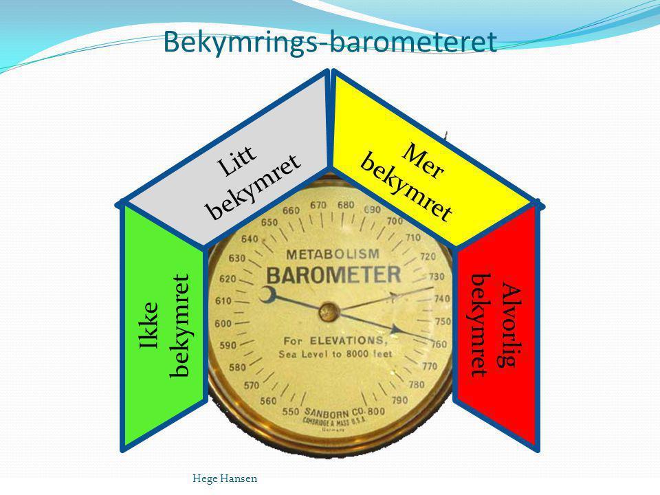 Bekymrings-barometeret