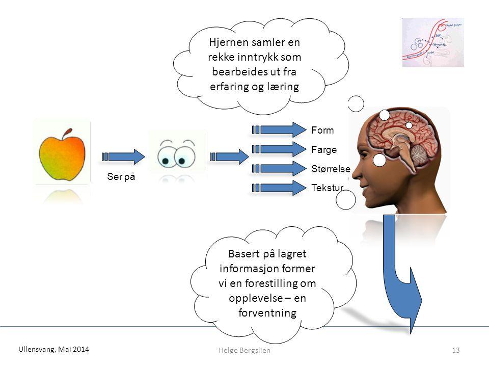 Hjernen samler en rekke inntrykk som bearbeides ut fra erfaring og læring