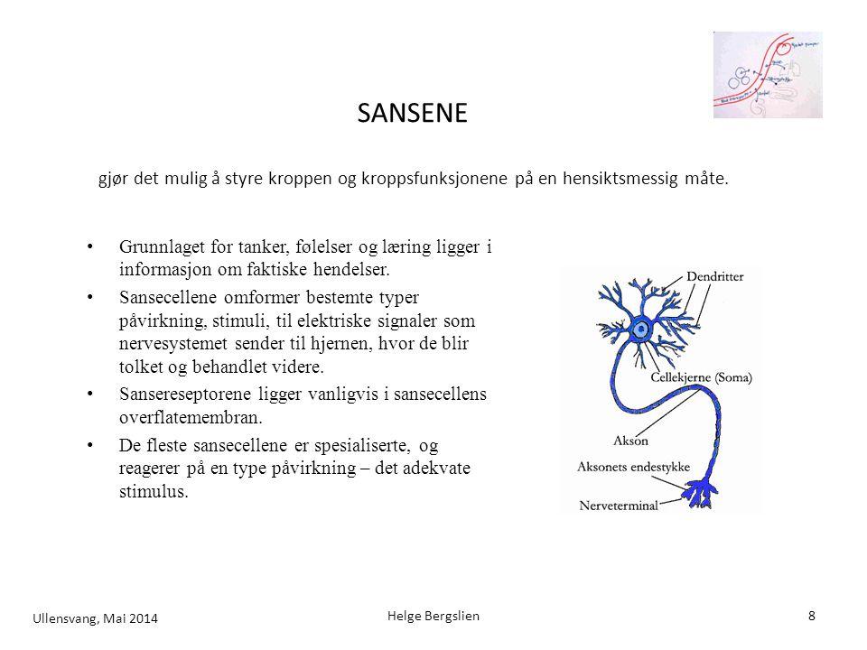 SANSENE gjør det mulig å styre kroppen og kroppsfunksjonene på en hensiktsmessig måte.