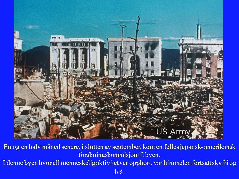 En og en halv måned senere, i slutten av september, kom en felles japansk- amerikansk forskningskommisjon til byen.