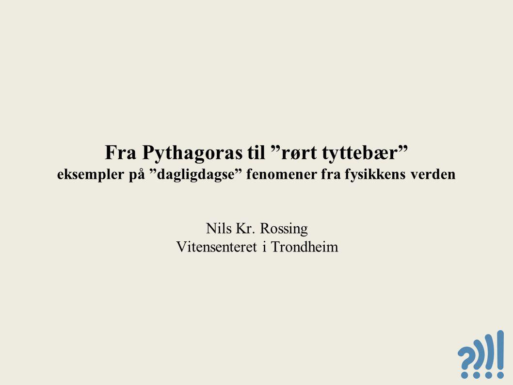 Nils Kr. Rossing Vitensenteret i Trondheim