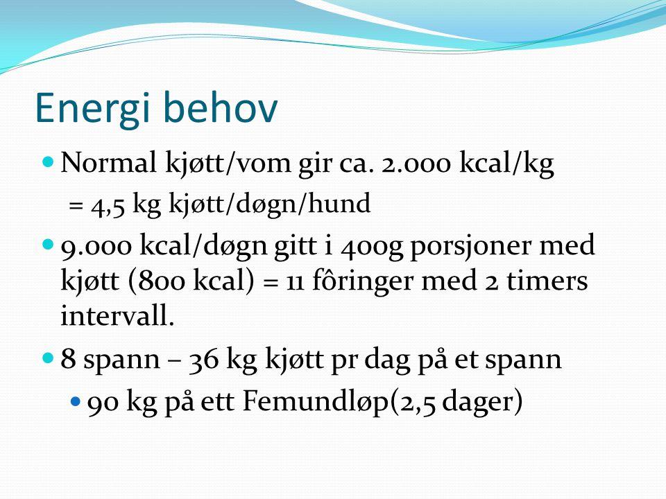 Energi behov Normal kjøtt/vom gir ca. 2.000 kcal/kg