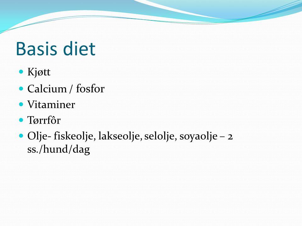 Basis diet Kjøtt Calcium / fosfor Vitaminer Tørrfôr