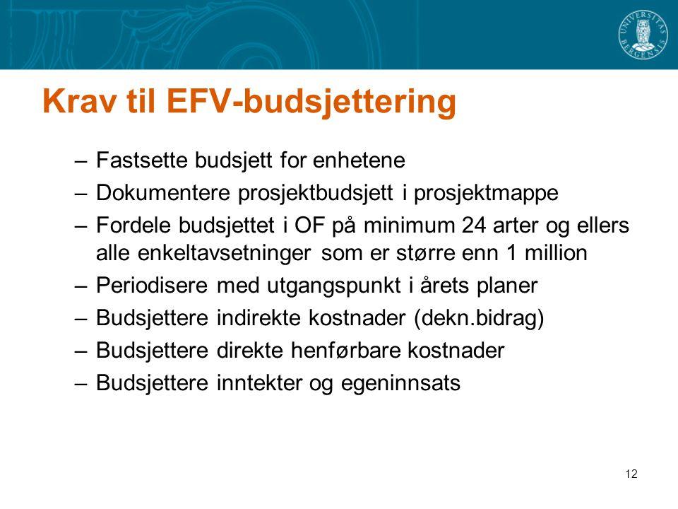 Krav til EFV-budsjettering