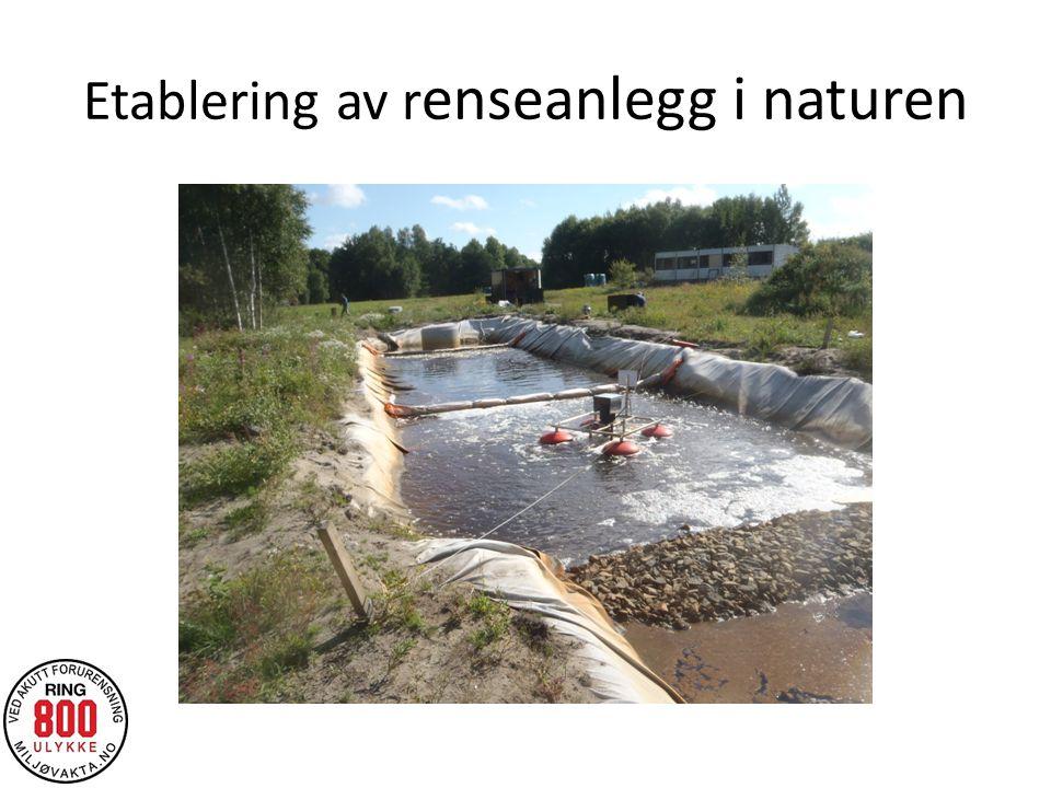 Etablering av renseanlegg i naturen