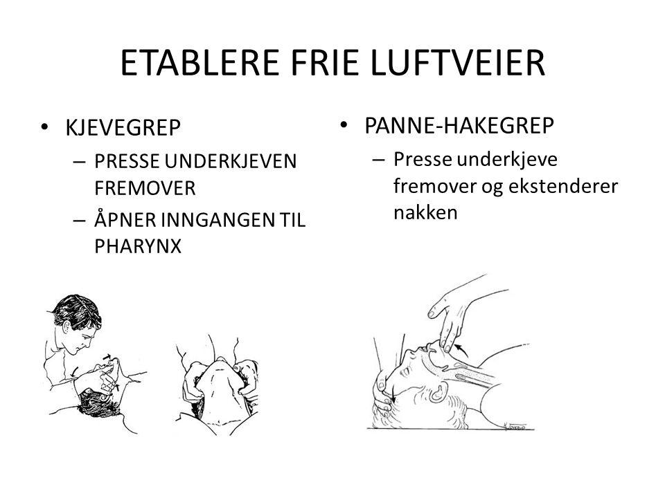 ETABLERE FRIE LUFTVEIER