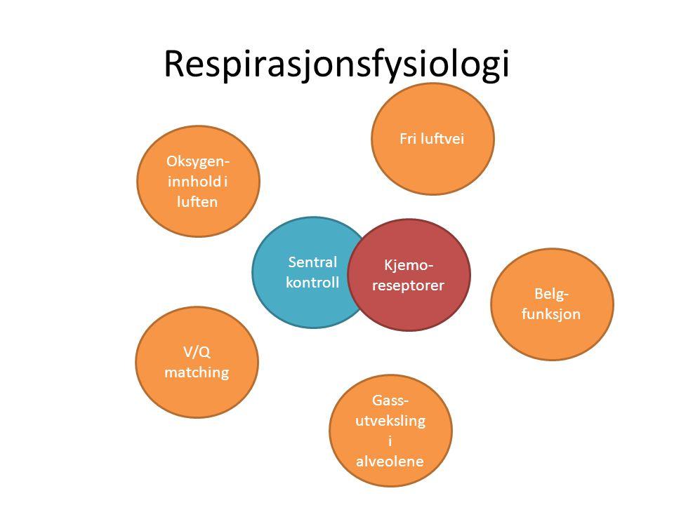 Respirasjonsfysiologi