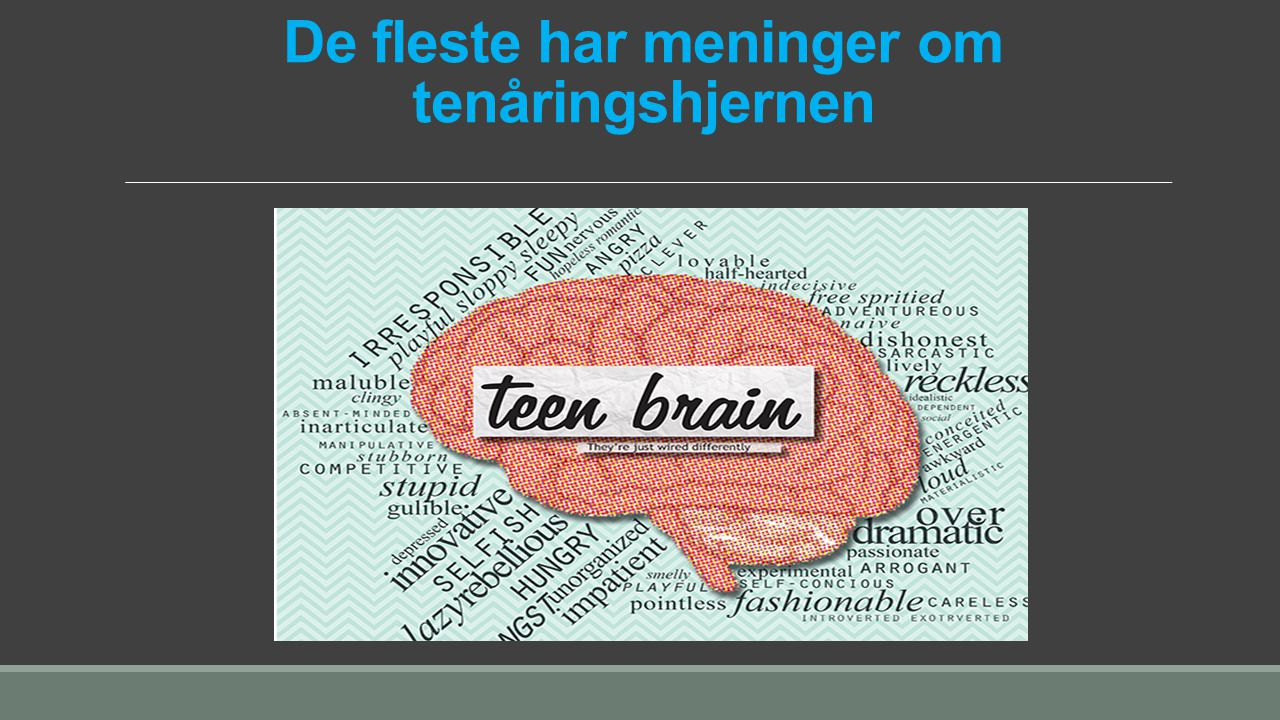 De fleste har meninger om tenåringshjernen