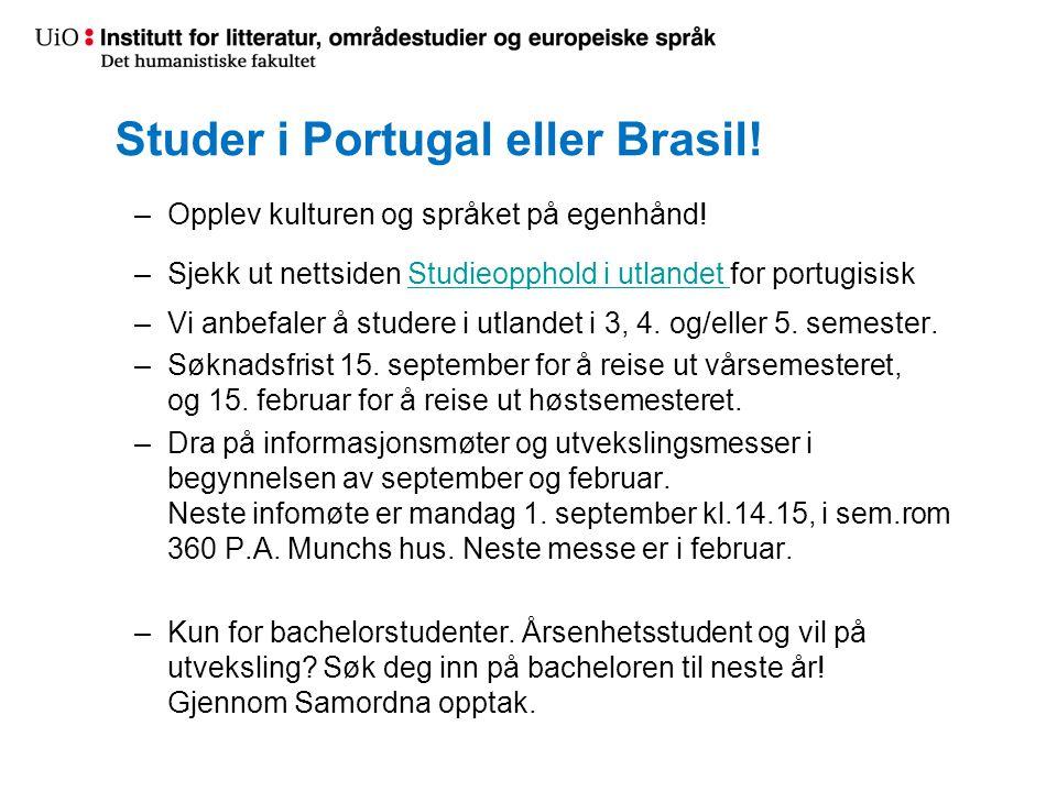Studer i Portugal eller Brasil!