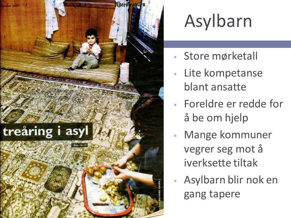 Asylbarn Store mørketall Lite kompetanse blant ansatte