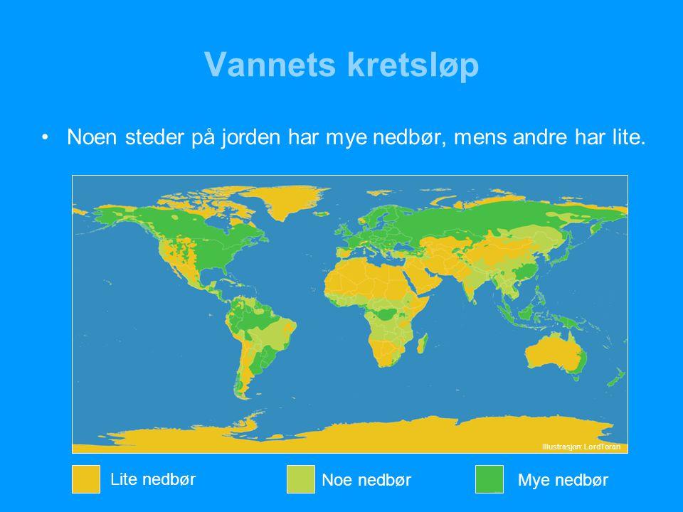 Vannets kretsløp Noen steder på jorden har mye nedbør, mens andre har lite.