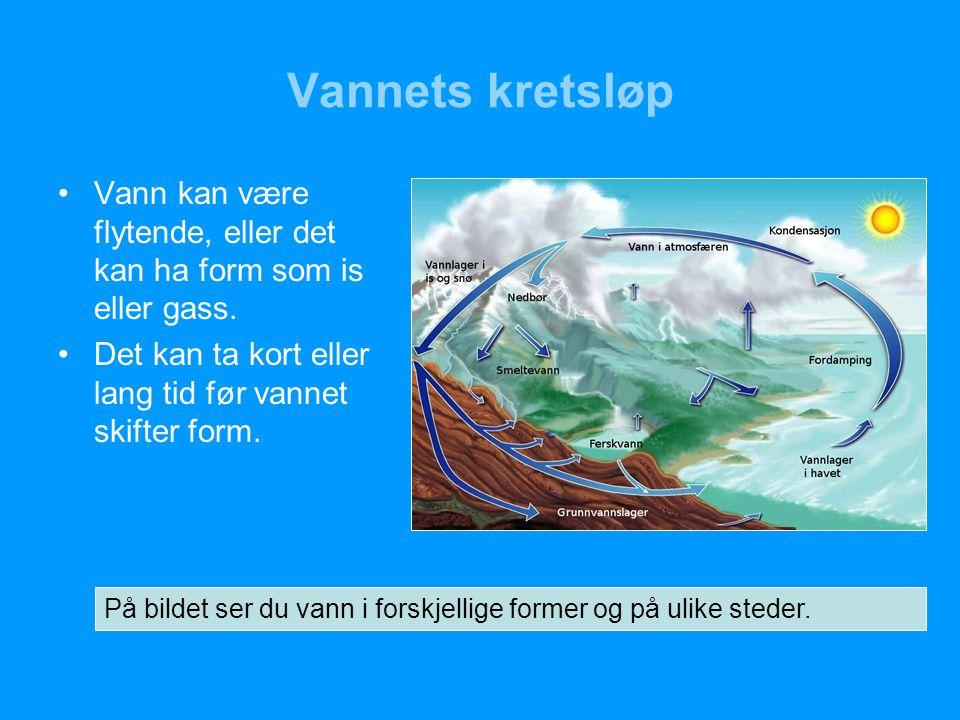 Vannets kretsløp Vann kan være flytende, eller det kan ha form som is eller gass. Det kan ta kort eller lang tid før vannet skifter form.