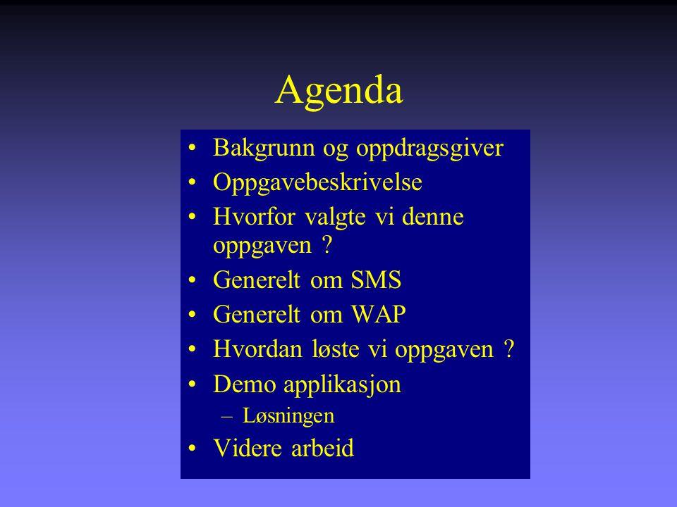 Agenda Bakgrunn og oppdragsgiver Oppgavebeskrivelse