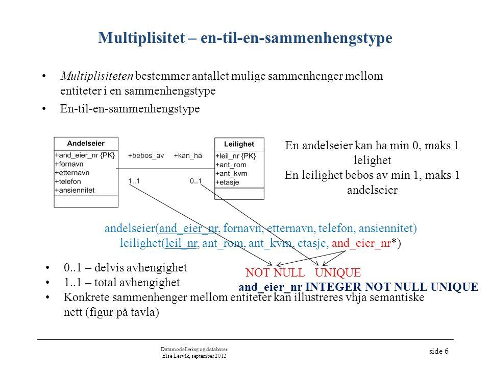 Multiplisitet – en-til-en-sammenhengstype