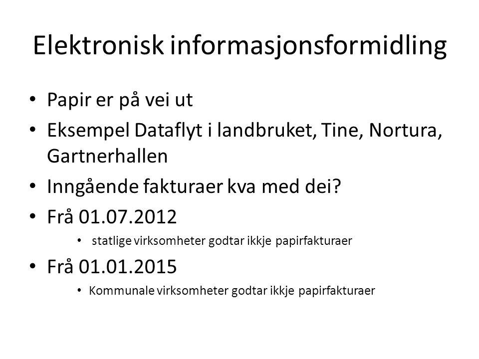 Elektronisk informasjonsformidling