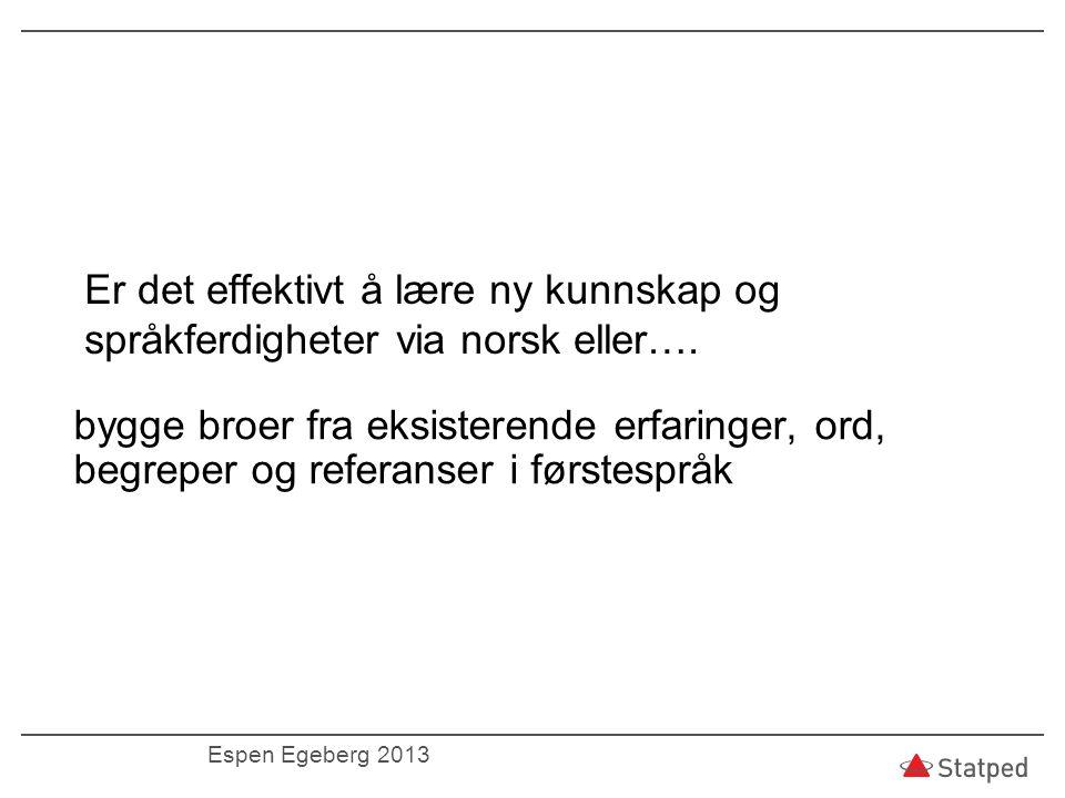 Er det effektivt å lære ny kunnskap og språkferdigheter via norsk eller….