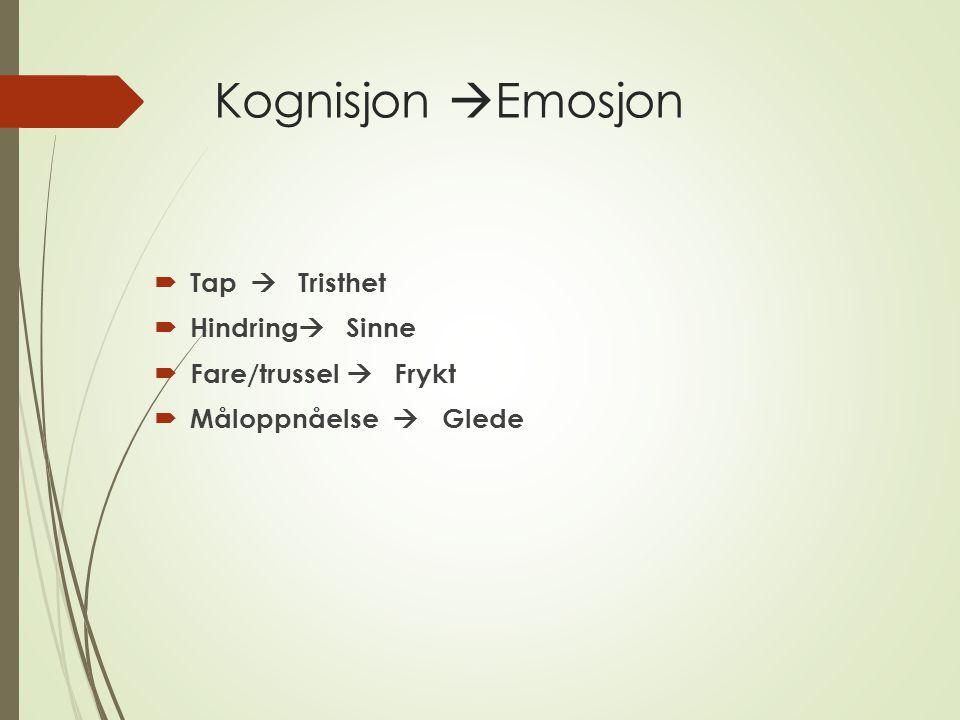 Kognisjon Emosjon Tap  Tristhet Hindring  Sinne