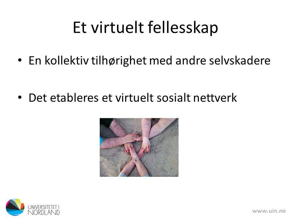 Et virtuelt fellesskap
