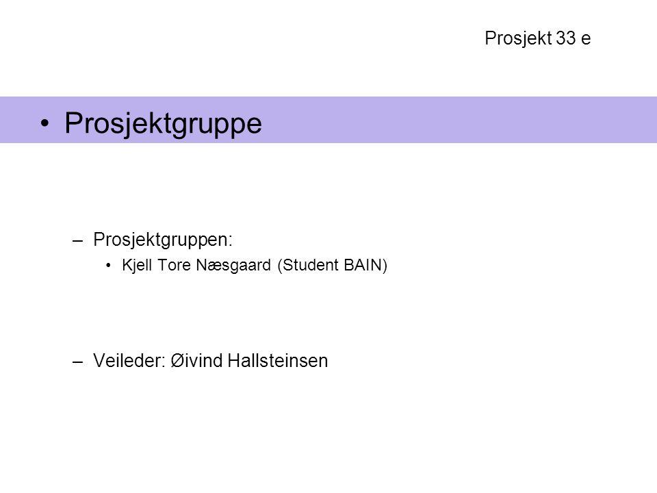 Prosjektgruppe Prosjekt 33 e Prosjektgruppen: