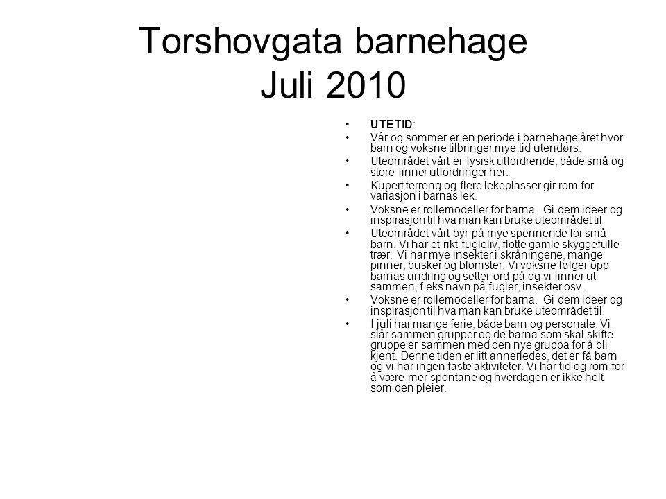 Torshovgata barnehage Juli 2010