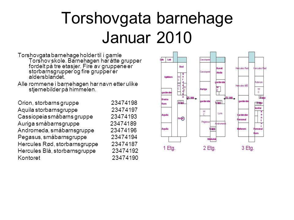 Torshovgata barnehage Januar 2010